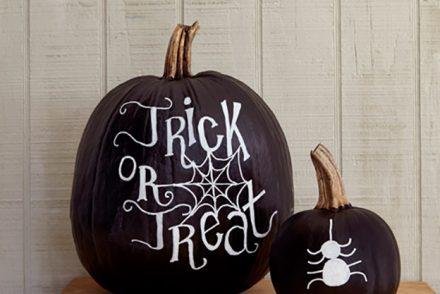 pumpkins-chalk-1014-xln-6795