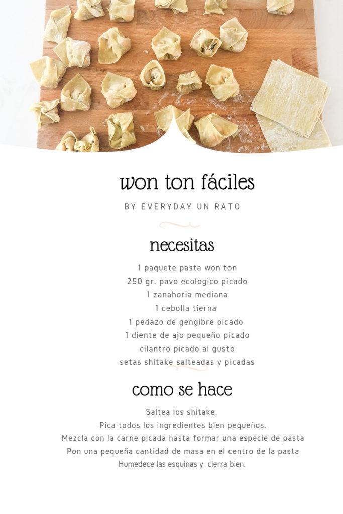 receta won ton